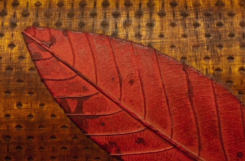 Tin on Wood