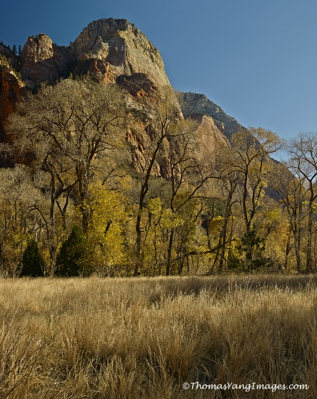 Zion Valley - ID: 13741885 © Hsiao-Tung Yang
