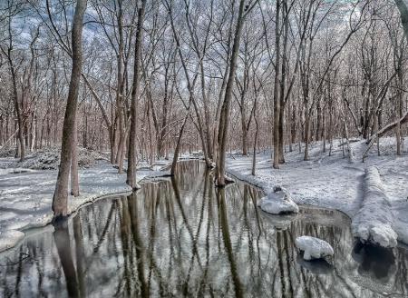 Messenger Woods