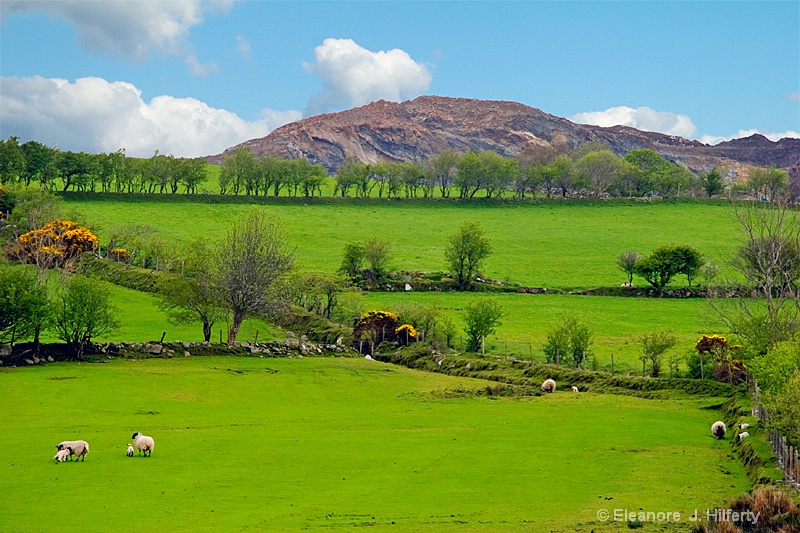 Beautiful Donegal - ID: 13758072 © Eleanore J. Hilferty