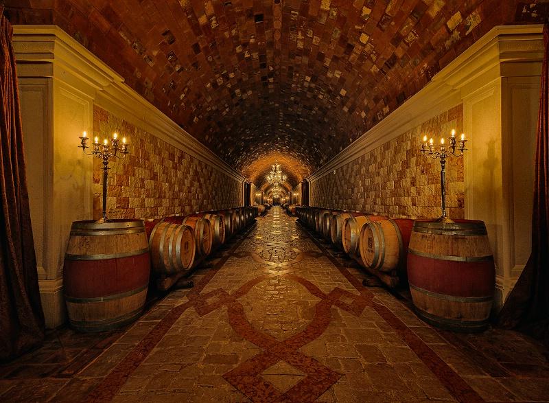 A Vineyard's Opulence
