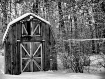 Winter Storms -Ne...