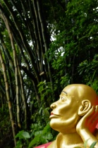 1000 Buddha Monastery in Hong Kong -Gaze Upwards
