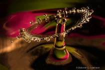 High Speed Water Drops _Shield