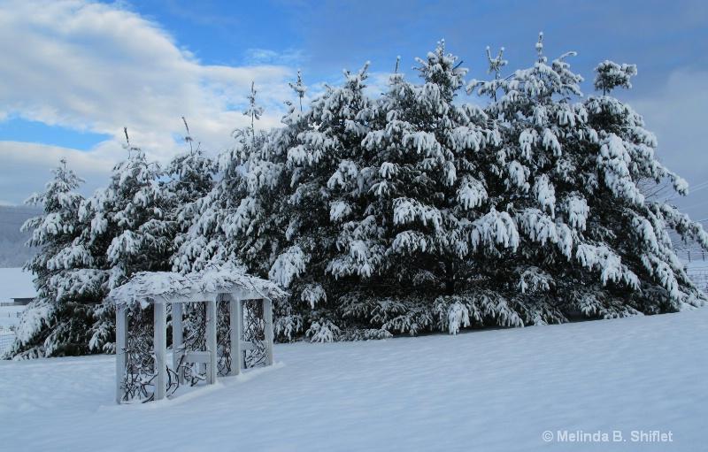 Spring Snowstorm II