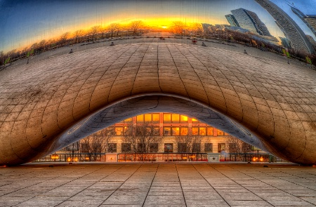 Bean Sunrise