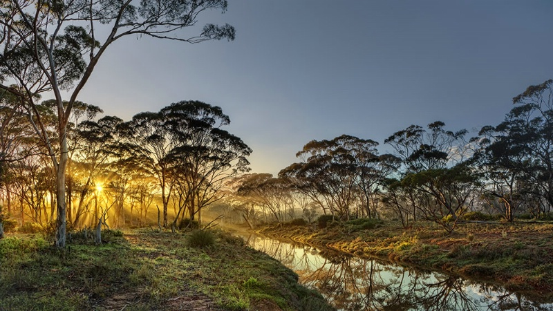 Cordingup Creek