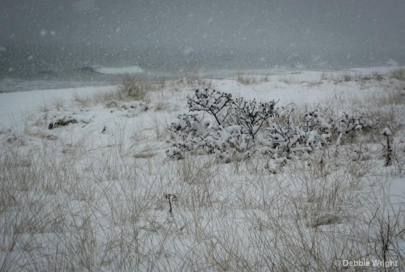 Stormy Beach - ID: 13802505 © deb Wright