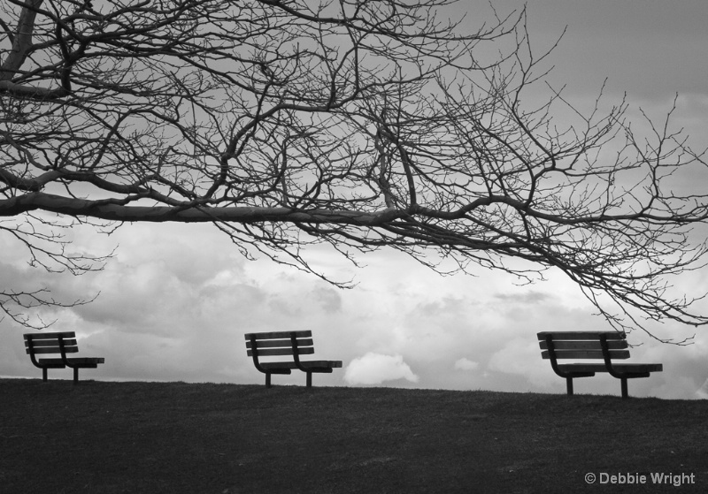 Benches - ID: 13807669 © deb Wright