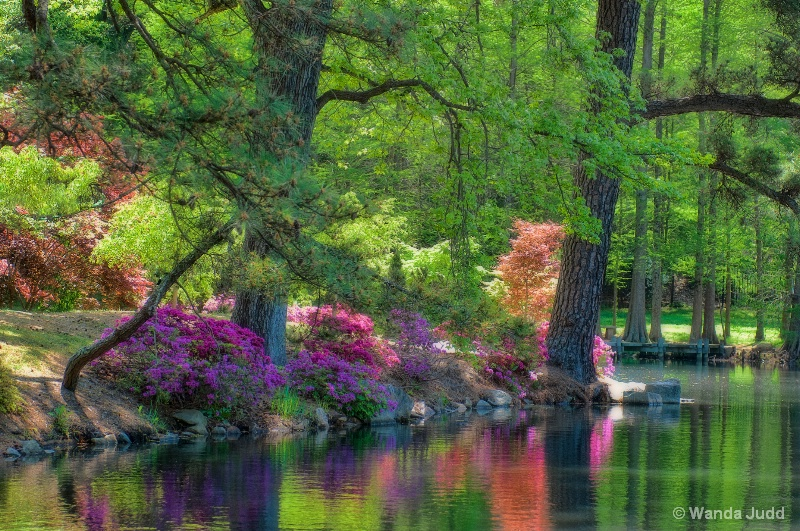Maymont Gardens - Spring - ID: 13827697 © Wanda Judd