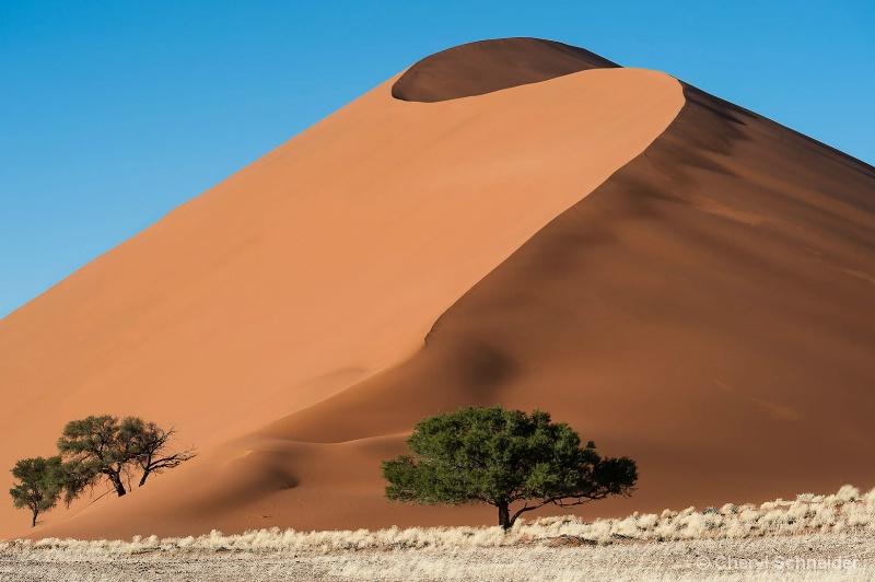 Sand Dune 1210
