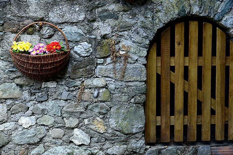 Welcome Flowers - ID: 13852888 © john podworniak