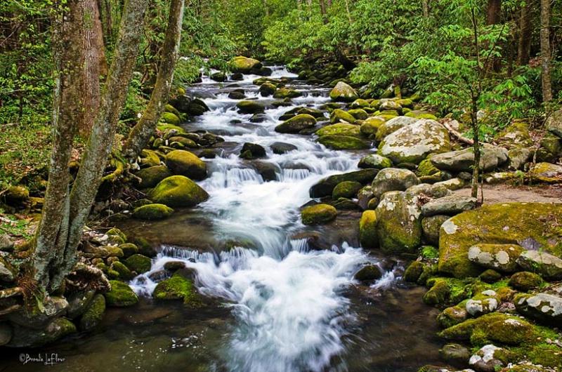 Smopkey Mountain National Park