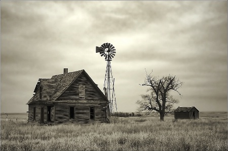 ~ OLD HOMESTEAD ~
