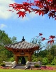 Korean Garden Vie...