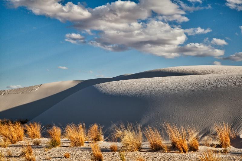 Encroaching Dunes - ID: 13885334 © Kerry L. Stewart
