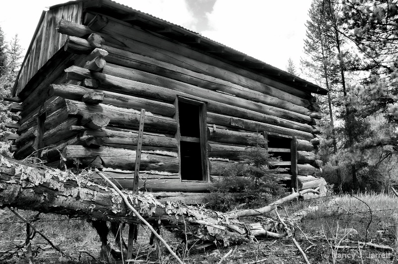 Abandoned Cabin Conner Montana