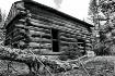 Abandoned Cabin C...