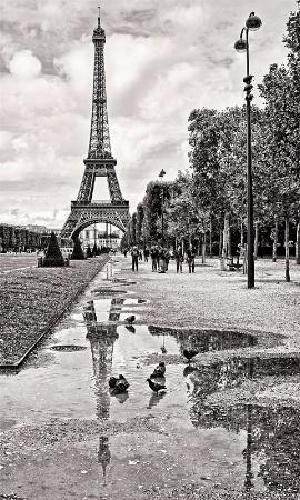 Revisiting Paris