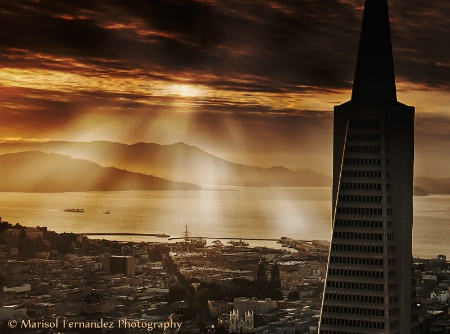 Transamerica Pyramid at Golden Hour