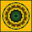 Sunflower Kaleido...