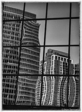 Bellevue Reflections