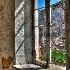 © Ann Lyssenko PhotoID # 13912747: Over the Wall