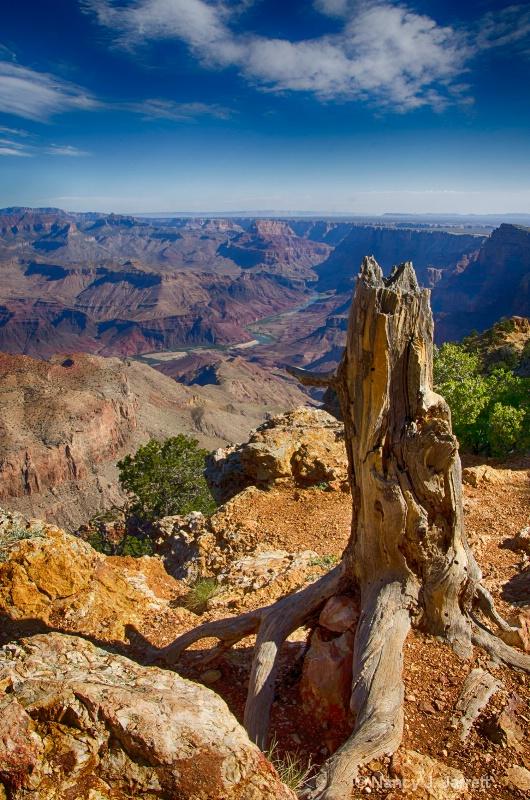 grand canyon image dsc4708