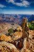 grand canyon imag...