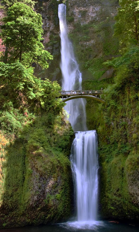Falls at Multnomah - ID: 13922974 © Clyde P. Smith