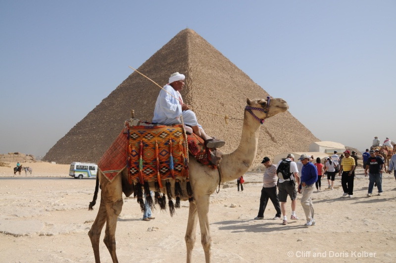 Camel for Rent - ID: 13927186 © Cliff Kolber