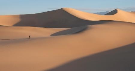 Mesquite isolation