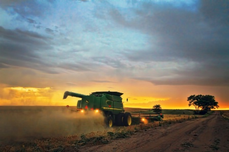 ~ SUNSET HARVESTING ~