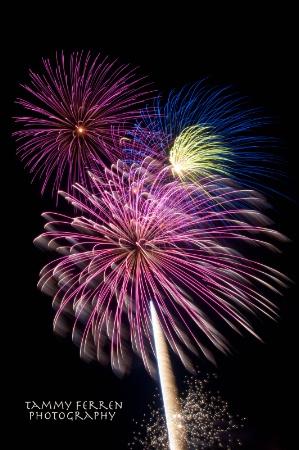 ~~  Happy Fourth!  ~~