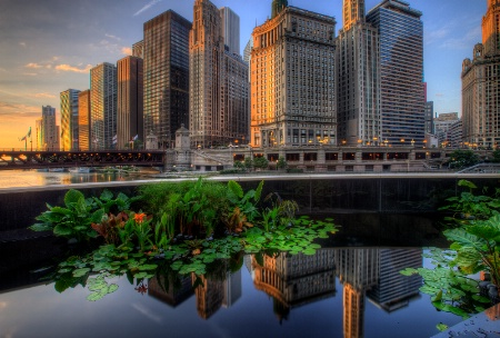 Chicago Sunrise Reflections