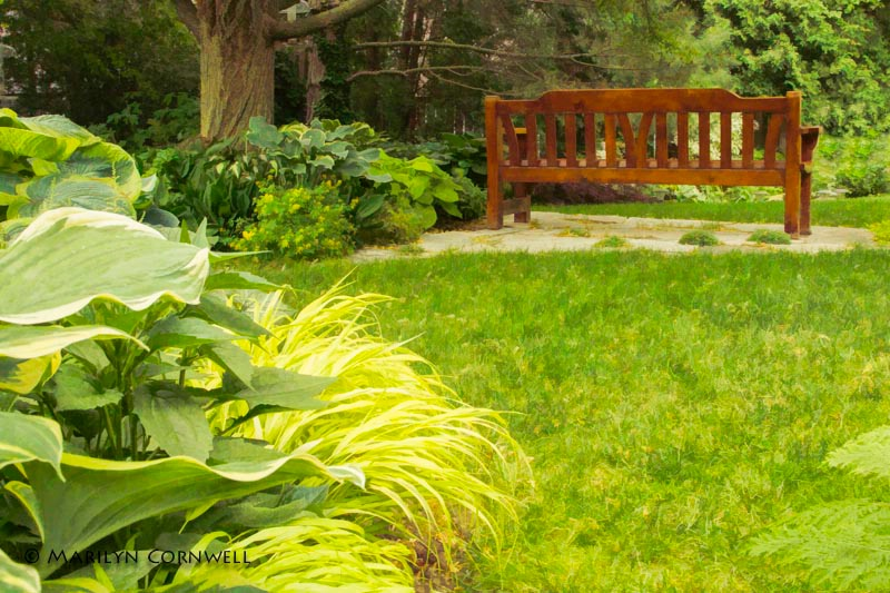 A Garden Complete - ID: 13978357 © Marilyn Cornwell