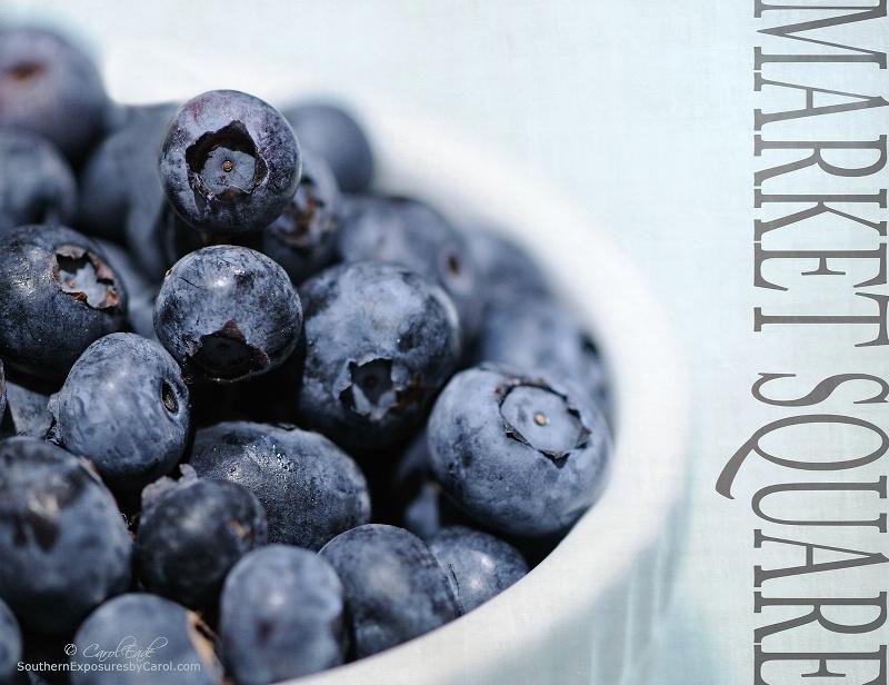 Blueberries - ID: 13987115 © Carol Eade