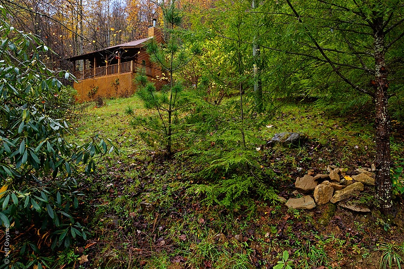 Hemlock Hideaway - ID: 14007880 © Jeff Gwynne