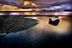 Driftwood in Tide...