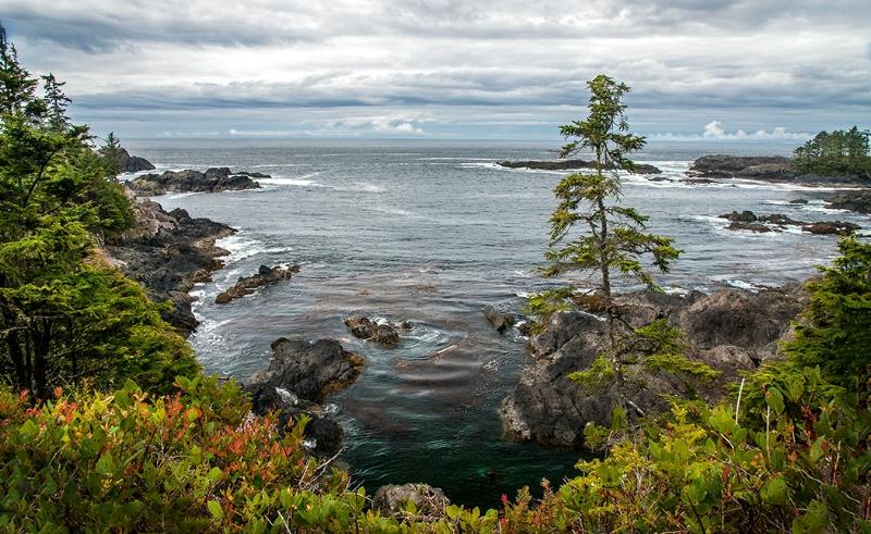 Ocean View - ID: 14017398 © Kelly Pape