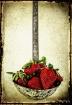 strawberry scoop!