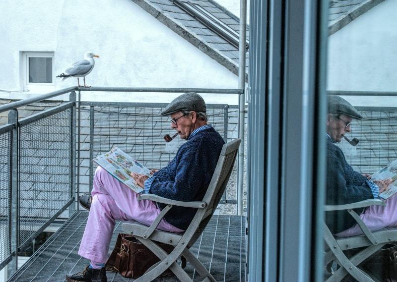 Even seagulls get bedtime stories!