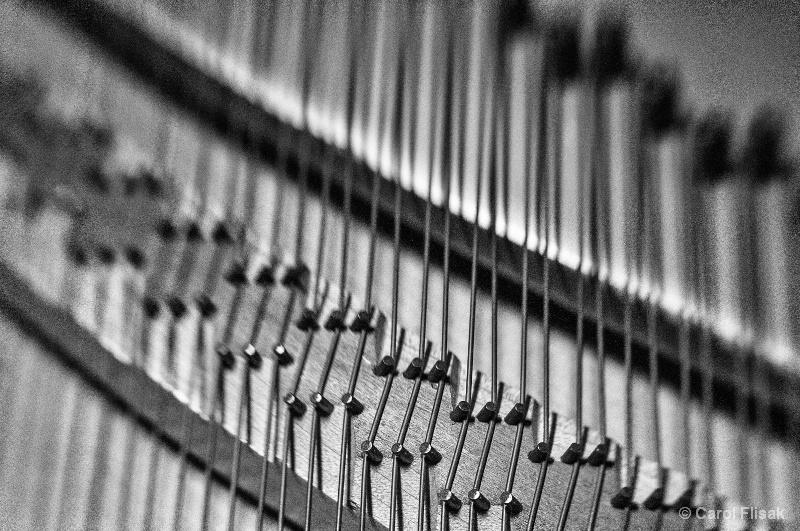 Piano Wires - ID: 14029244 © Carol Flisak
