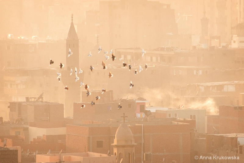 Over the Cairo