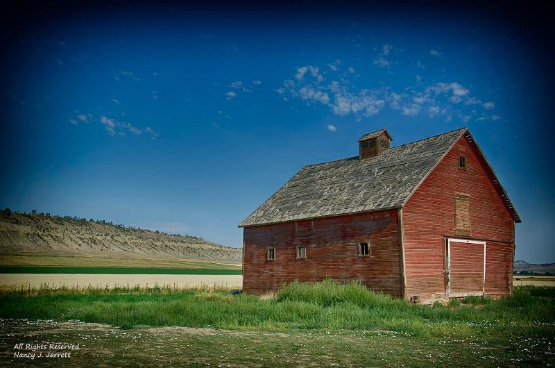 abandoned barn bridger montana image 8474