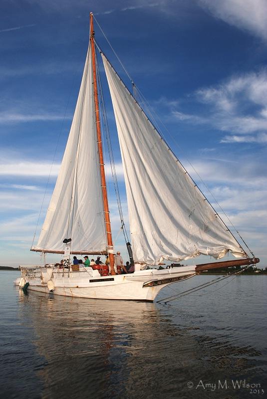 Chesapeake Bay Beauty