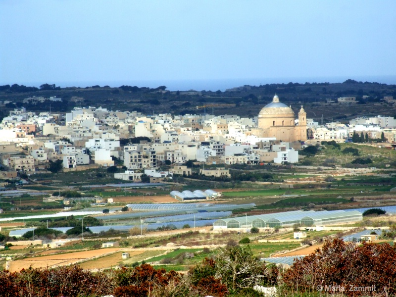 Typical Maltese Countryside