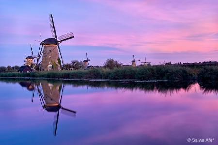Windmills @ Kinderdijk