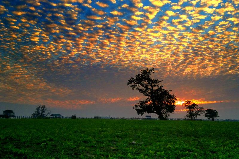 Beautiful of Nature !