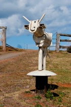 Unique Dorrigo Mailbox